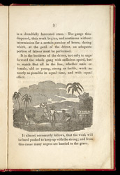 Reasons For Using East India Sugar Page 9